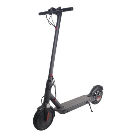 Movilidad.4